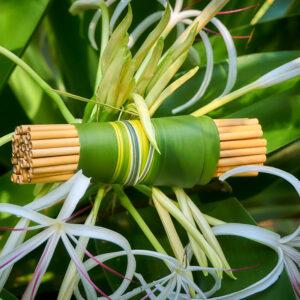 bambuko šiaudelių rinkinys Bamboo Step